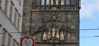 Зимородок на башне Карлова моста