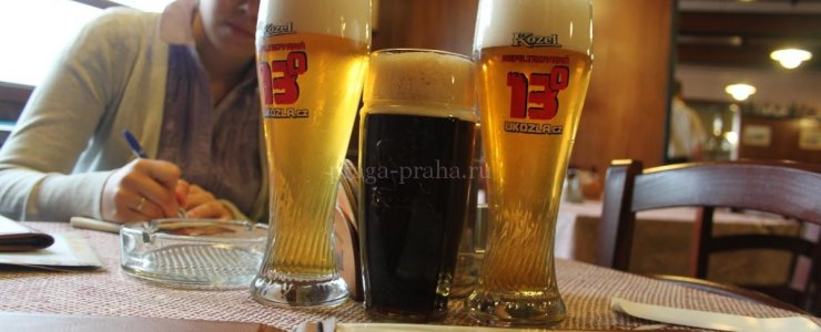 Пивоварня Велкопоповицкий Козел