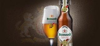 Пивоварня Бернард - Bernard