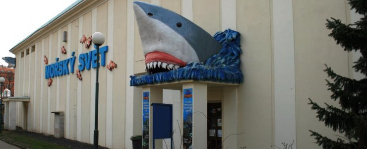 Морской мир (аквариум)