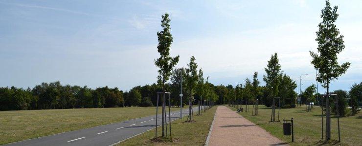 Парк Ладронка