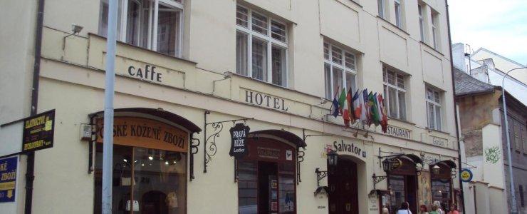 Отель Hotel Salvator
