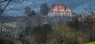 Замок Кунштат