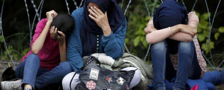 Беженцы в Чехии