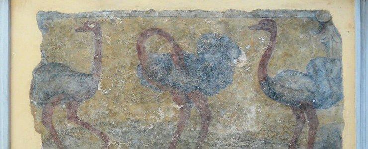 Дом У Трех страусов