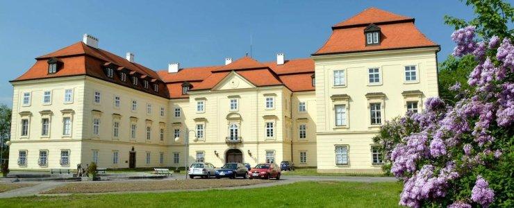 Замок Напаедла