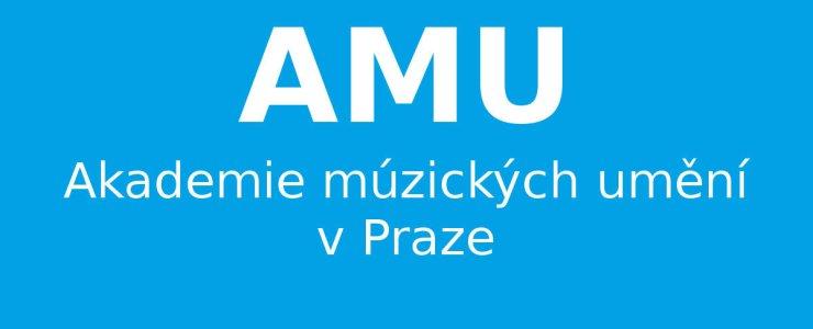 Академия музыкальных искусств (AMU)