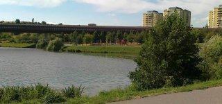 Непомуцкий пруд