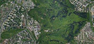 Кунратицко-Михельский лес