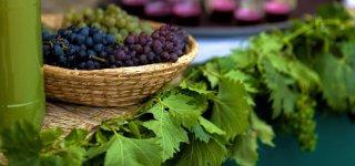 Винобрани