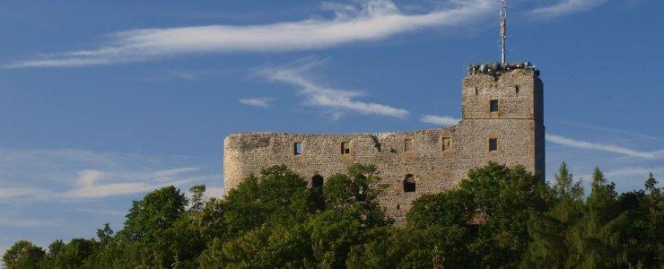 Замок Радине