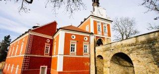 Савойский замок (Замок Шкворец)
