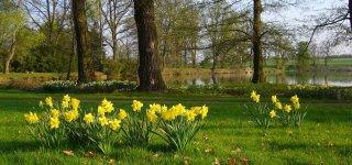Дендрологический сад Пругонице