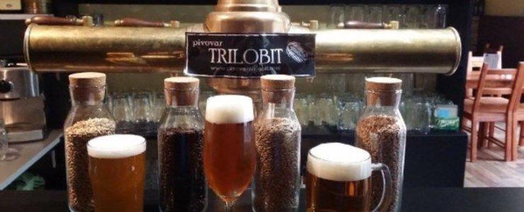Пивная Pivovar Trilobit