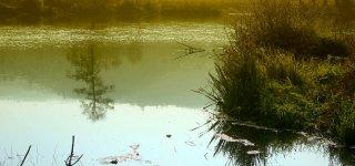 Река Бероунка