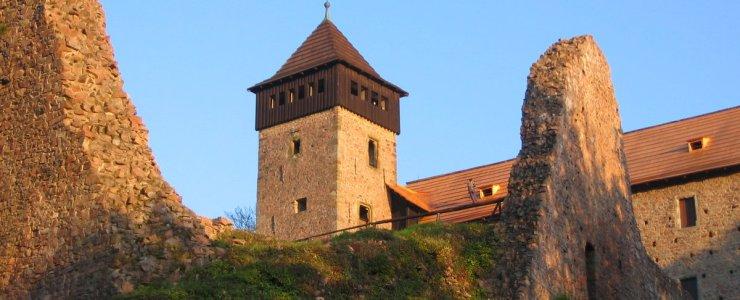 Замок Литице