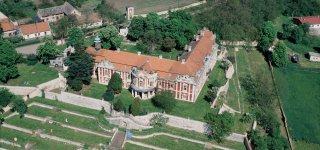 Замок Стекник
