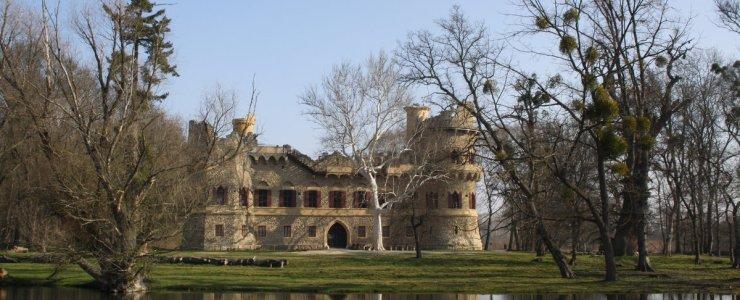 Замок Янув Град
