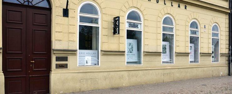 Художественная галерея Hollar