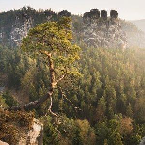 Магия Саксонской Швейцарии