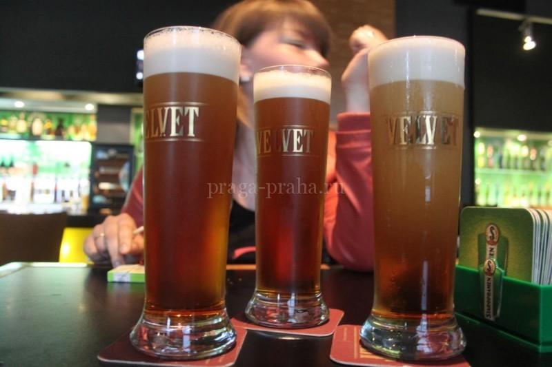 Пивная На верандах - вельвет