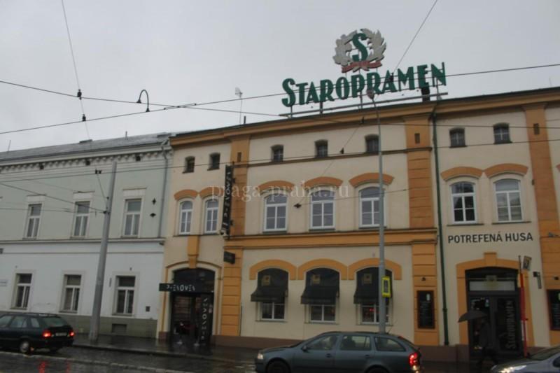 Пивная На верандах - Staropramen