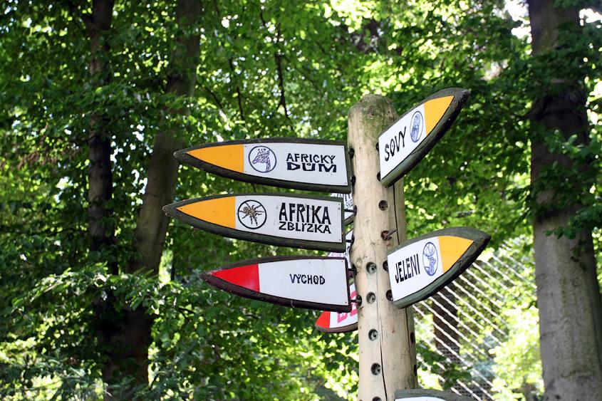 знаки направления в зоопарке