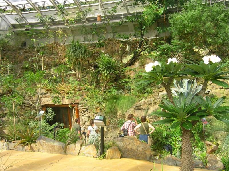 Ботанический сад 4