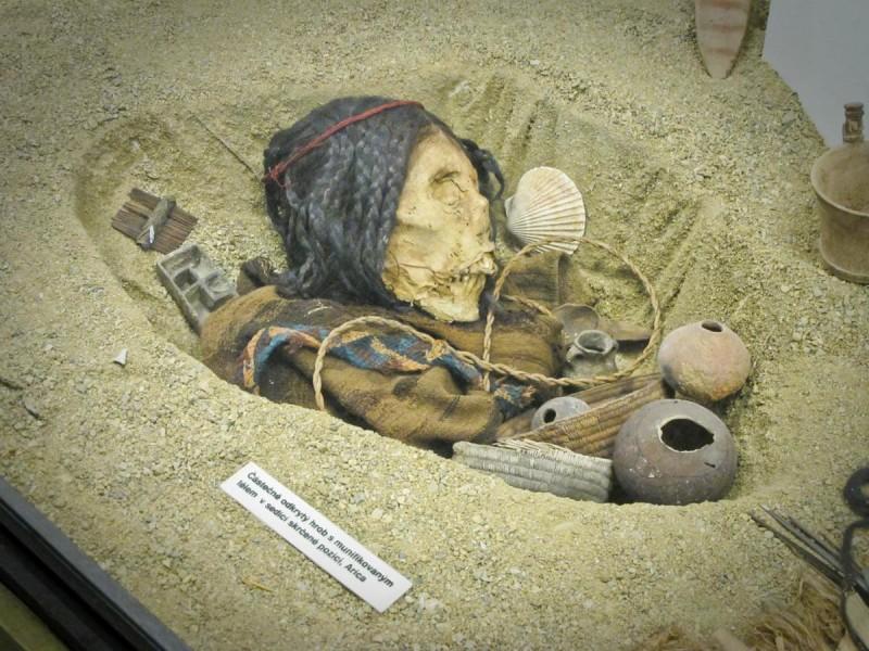 Музей Напёрстка 5
