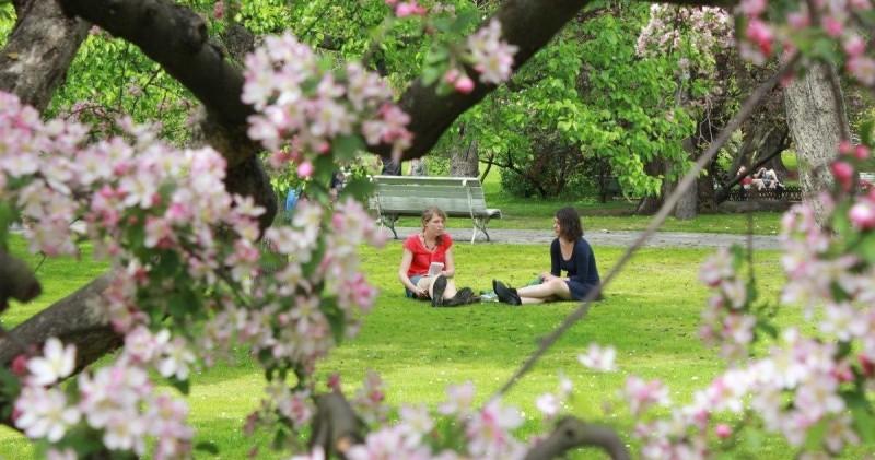 Погода в Праге весной 2