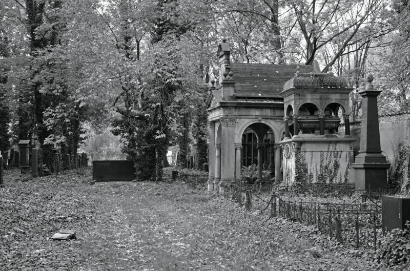 Новое еврейское кладбище 3