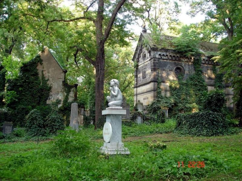 Ольшанское кладбище 10