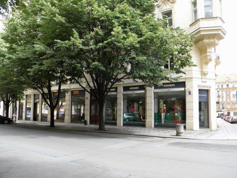 Парижская улица 5