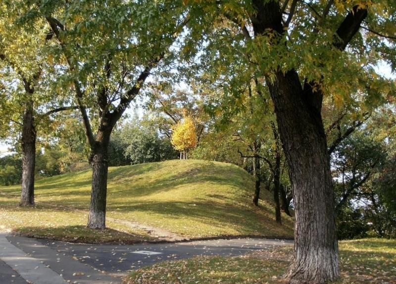Парк Витков 11