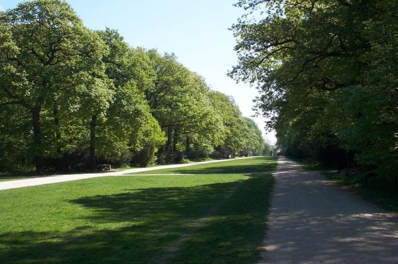 Парк Звезда 2