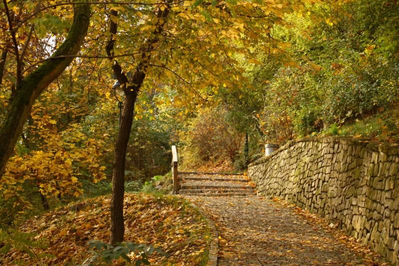 Парк Кинского 4