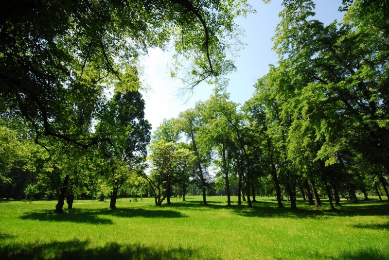 Парк Стромовка 3