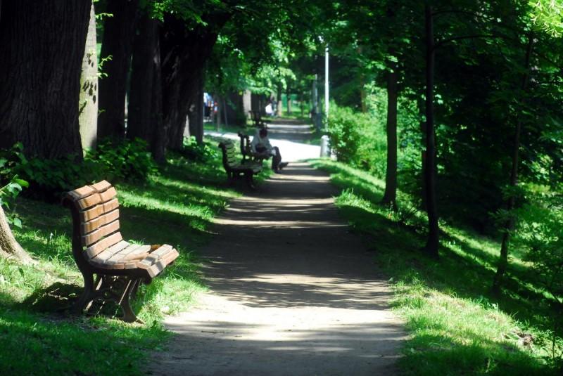 Парк Стромовка 6