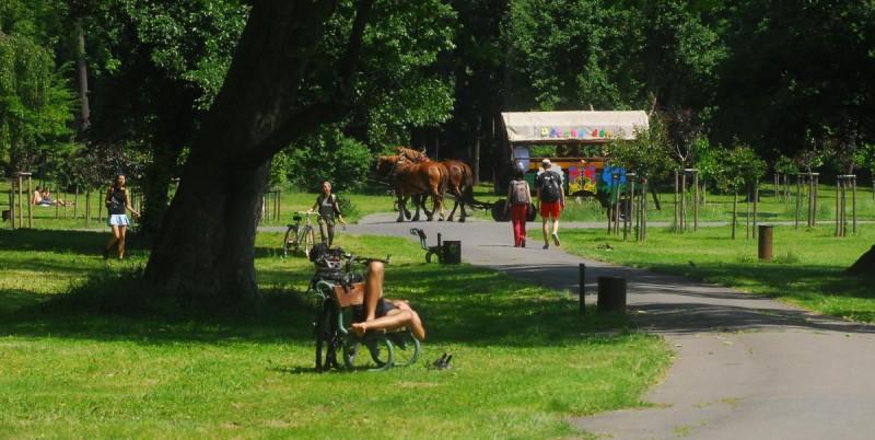 Парк Стромовка 7