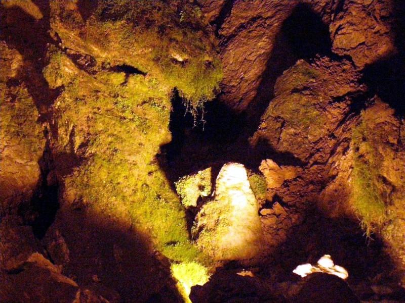 Бозковские доломитовые пещеры 8