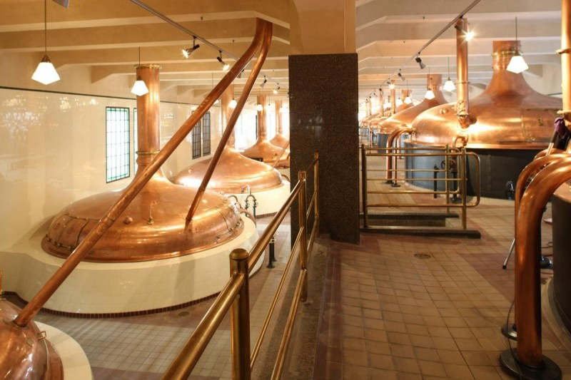 Пивоварня Gambrinus 4