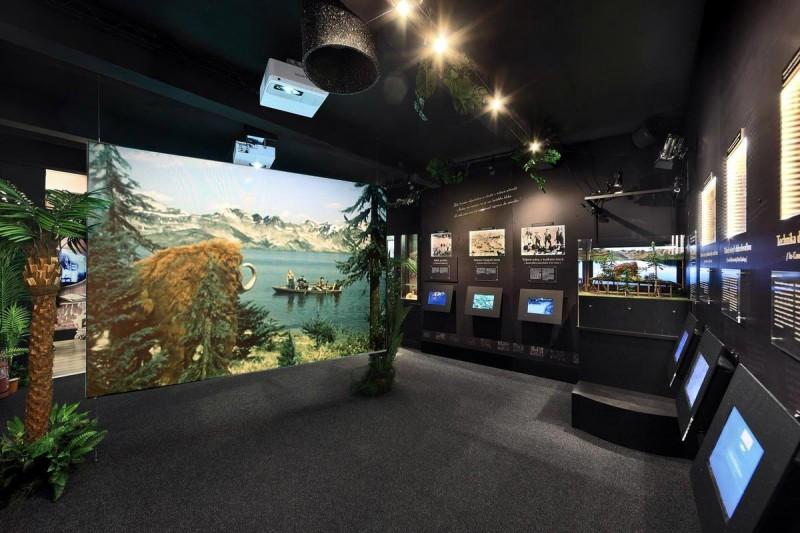 Музей Карела Земана 2