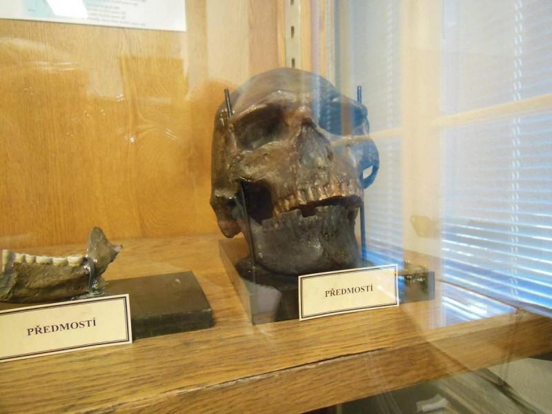 Грдличков музей человека 10
