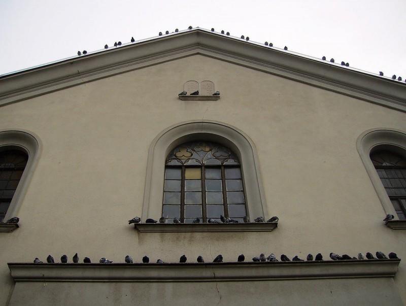 Либенска синагога 3