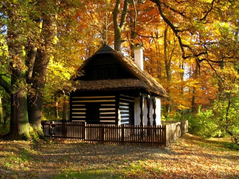 Пругоницкий парк 4