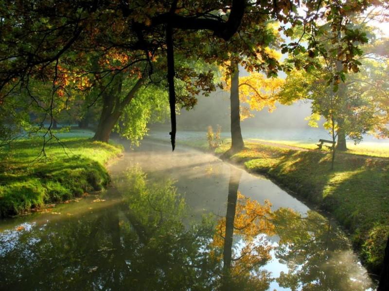 Пругоницкий парк 5